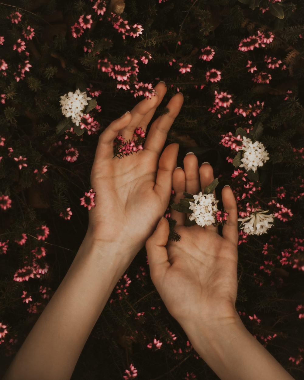 pair hands